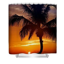 Night Of The Sun Shower Curtain by Karen Wiles