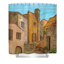 Nola 2 Shower Curtain by Pamela Allegretto