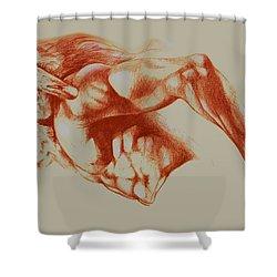 North American Minotaur Red Sketch Shower Curtain by Derrick Higgins