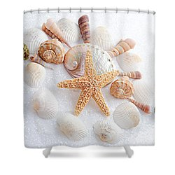 North Carolina Sea Shells Shower Curtain by Andee Design