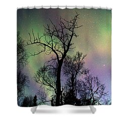 Northern Lights Cottonwood Shower Curtain by Ron Day