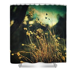 Nouvelle Vague II Shower Curtain by Taylan Apukovska