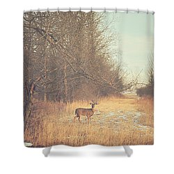 November Deer Shower Curtain by Carrie Ann Grippo-Pike