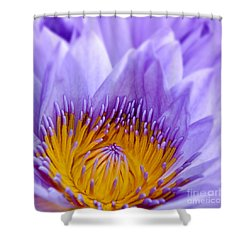 Nymphea Shower Curtain by Delphimages Photo Creations