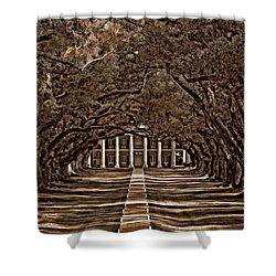 Oak Alley Bw Shower Curtain by Steve Harrington