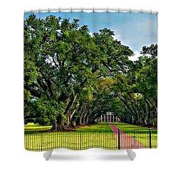 Oak Alley Plantation 2 Shower Curtain by Steve Harrington