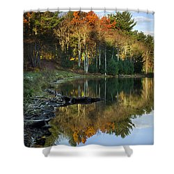 Oakley Corners State Forest Shower Curtain by Christina Rollo