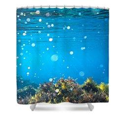 Ocean Garden Shower Curtain by Stelios Kleanthous