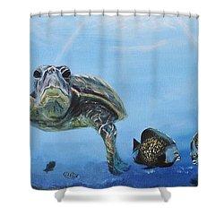 Ocean Life Shower Curtain by Donna Tuten