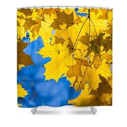 October Blues 8 - Square Shower Curtain by Alexander Senin