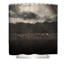 October Insight Shower Curtain by Taylan Soyturk