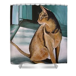 Oh Beautiful House Cat Shower Curtain by J Linder