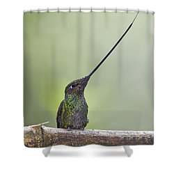 Oh Mighty Sword.. Shower Curtain by Nina Stavlund