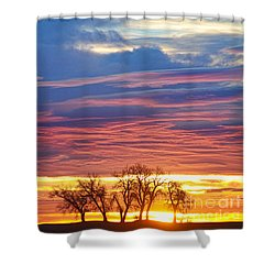 Oh What A Beautiful Morning Shower Curtain by James BO  Insogna