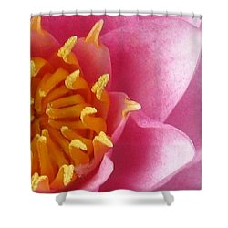 Okeefe Lily Blossom Shower Curtain by Debbie Finley