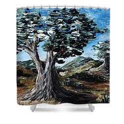 Old Olive Tree Shower Curtain by Anastasiya Malakhova