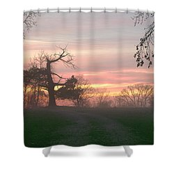 Old Tree At Sunset Shower Curtain by Brian Harig