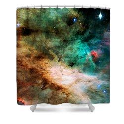 Omega Swan Nebula 2 Shower Curtain by Jennifer Rondinelli Reilly - Fine Art Photography