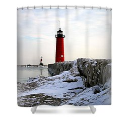 On A Cold Winter's Morning Shower Curtain by Kay Novy