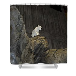 On Top Of The World Shower Curtain by Tara Lynn