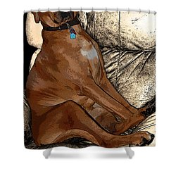 One Cool Dog Shower Curtain by Mim White
