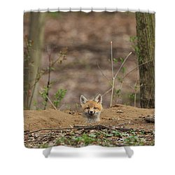 One Last Look Shower Curtain by Everet Regal