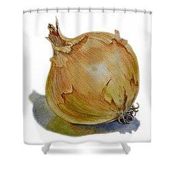 Onion Shower Curtain by Irina Sztukowski