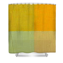 Orange And Mint Shower Curtain by Michelle Calkins