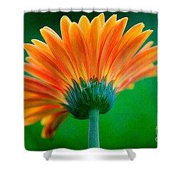 Orange Blast Shower Curtain by Lois Bryan