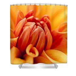 Orange Centre Shower Curtain by Anne Gilbert