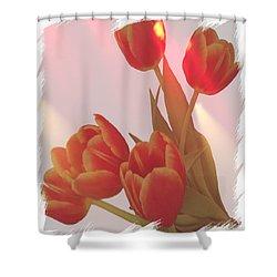 Orange Light Shower Curtain by Debra  Miller