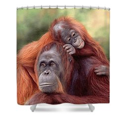 Orangutans Painting Shower Curtain by Rachel Stribbling
