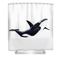 Orca - Killer Whale Shower Curtain by Michael Vigliotti