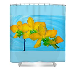 Orchid In Yellow Shower Curtain by Ben and Raisa Gertsberg