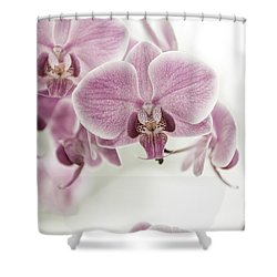 Orchid Pink Vintage Shower Curtain by Hannes Cmarits