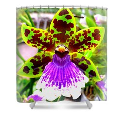 Orchid Shower Curtain by The Creative Minds Art and Photography
