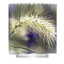 Ornamental Sweet Grass Shower Curtain by Heiko Koehrer-Wagner