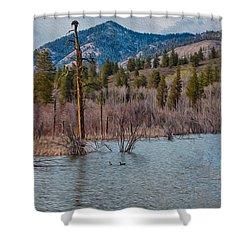 Osprey Nest In A Beaver Pond Shower Curtain by Omaste Witkowski