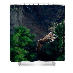 Osprey With Fish Shower Curtain by Ernie Echols