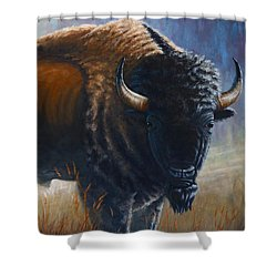 Out Of The Mist Shower Curtain by Clay Hibbard