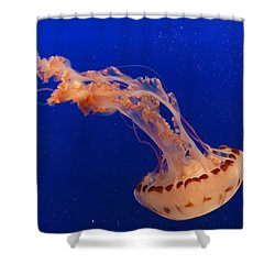 Out Of This World - Jellyfish Shower Curtain by Angela A Stanton