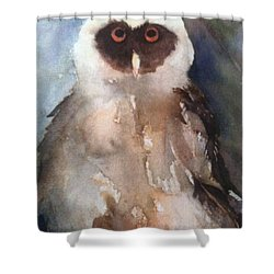 Owl Shower Curtain by Sherry Harradence