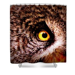 Owl's Eye Shower Curtain by Ramona Johnston