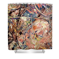 Paint Number 53 Shower Curtain by James W Johnson