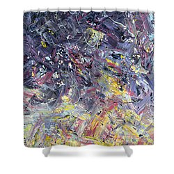 Paint Number 55 Shower Curtain by James W Johnson
