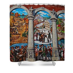 Painted History 2 Shower Curtain by Joann Vitali