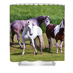 Painted Pretty Horses Shower Curtain by Athena Mckinzie