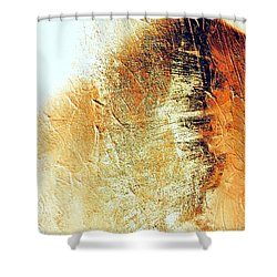 Painting With Shadows Shower Curtain by Jacqueline McReynolds