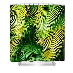 Palm Leaves In Green And Gold Shower Curtain by Karon Melillo DeVega