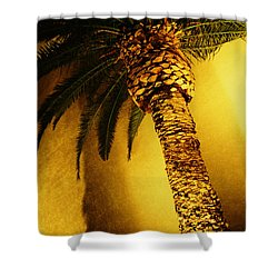 Palm Tree In Vegas. Shower Curtain by Yo Pedro